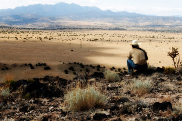 No Country for Old Men [2008] Movie Review Recommendation
