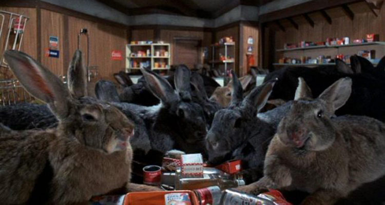 Night of the Lepus - Night of the Rabbits movie - giant rabbits in a supermarket