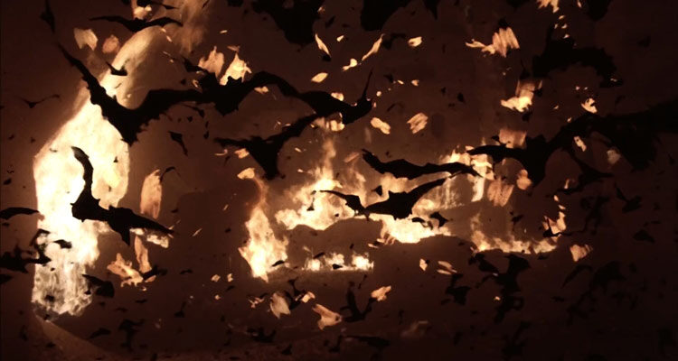 Nightwing 1979 Movie A swarm of bats flying away from a fire behind them