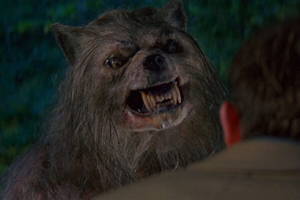 Bad Moon 1996 Movie Werewolf showing his teeth and gnarling at man