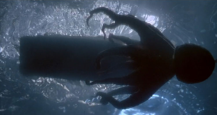 Sea Monsters - Top Ten Octopus Movies cover image that's from Tentacles 1977 Movie